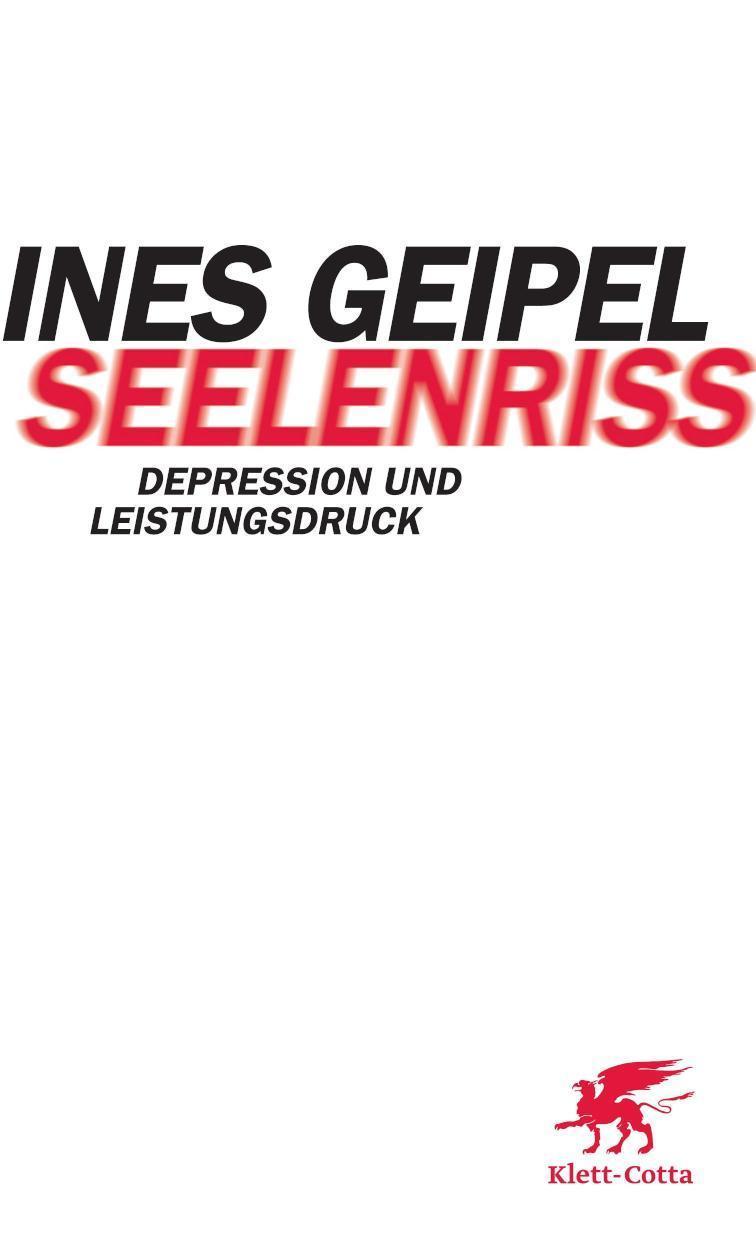 Seelenriss Depression und Leistungsdruck
